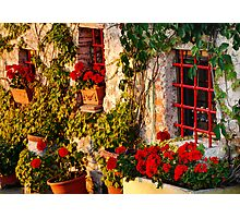 Red Under the Tuscan Sun Photographic Print