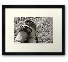 Footloose And Fancy Free Framed Print