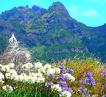 in the mountains of Madeira by supergold