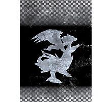 Pokemon Black Photographic Print