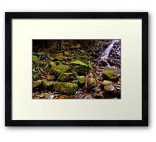 Mt Wilson - Mossy Rocks Framed Print