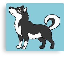 White & Black Alaskan Malamute with Curled Tail Canvas Print