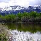 Lake Maskinonge by George Cousins