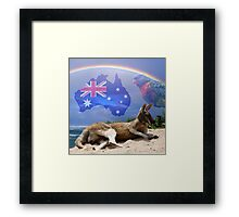Kangaroo and Lorikeet Framed Print