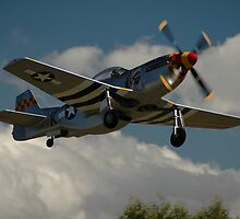 Hawkeye Flies - Replica Mustang @ Tyabb 2012 by muz2142
