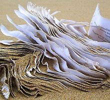 Sand paper by Jimmy Joe