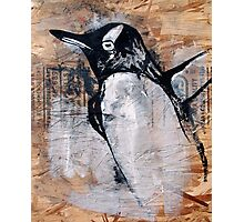 reclaimed penguin  Photographic Print