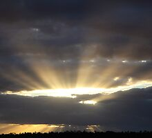 Rays Over Greendale by Saraswati-she
