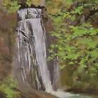 Wolf Creek Falls by Karen Ilari