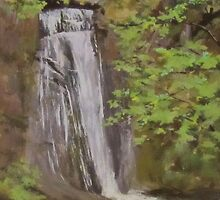 Wolf Creek Falls by Karen Ilari