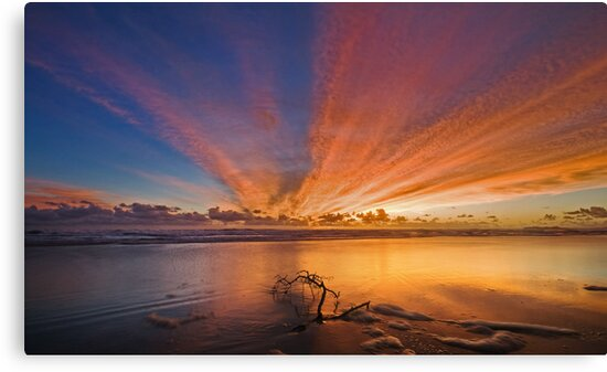 Streaks of Dawn  by Ian  Clark