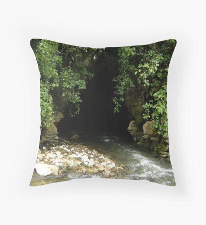 Cavemouth Throw Pillow