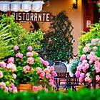 Ristorante by Lynnette Peizer