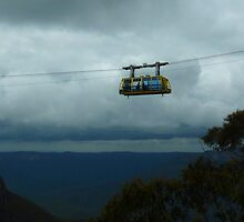 Blue Mountains Skyway by Sharon Brown
