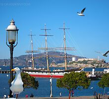 Balclutha  and the Gulls by David Denny