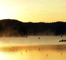 Sunrise over Lake Jindabyne  by Harry Oldmeadow