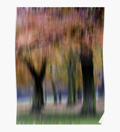 Group of Trees in Motion Poster