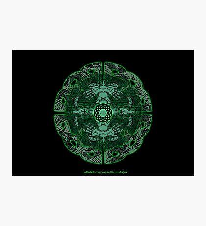 Celtic Wheel of Pan Photographic Print