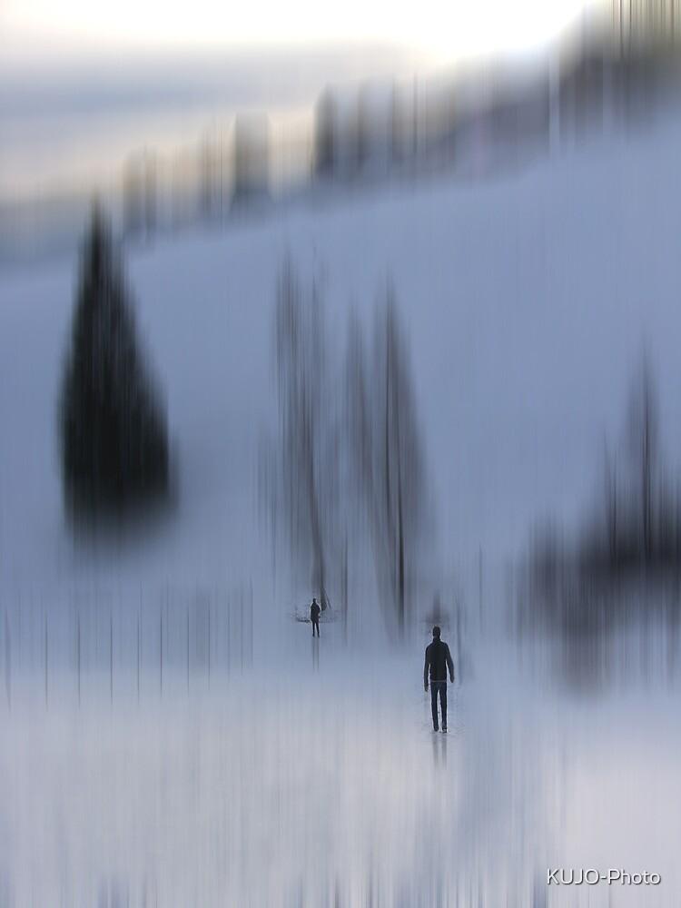 Winter Walk, Fischbacher Alps, Austria by KUJO-Photo