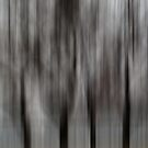Four Trees - Abstract by KUJO-Photo