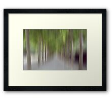 Avenue of Trees in Motion, Brussels Framed Print