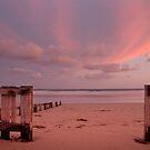 Pink at Night by John Sharp