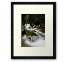 Meanders Portrait Framed Print