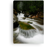 Meanders Portrait Canvas Print