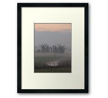 Misty Morning (2), Cheshire Framed Print