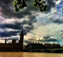 The Houses Of Parliament by Don McGowan