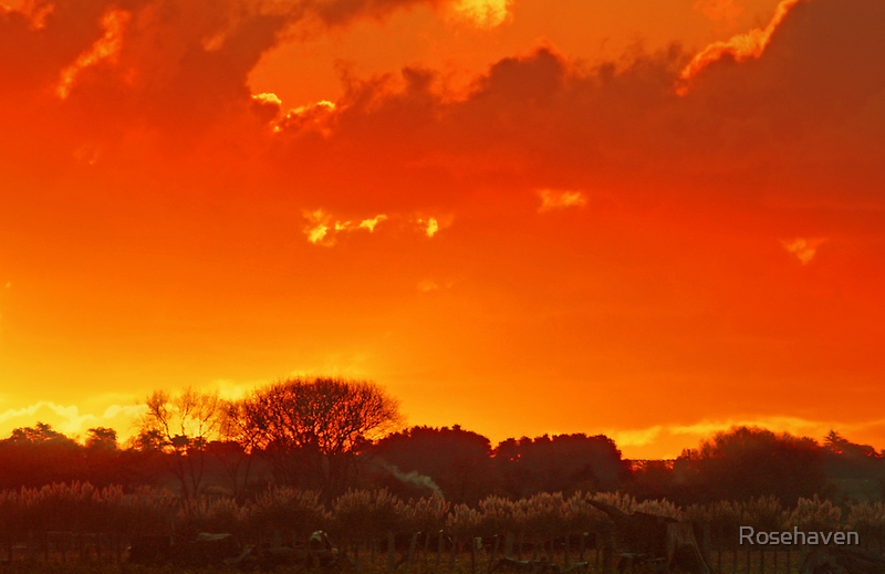"""""""Autumn Sunset ....."""" by Rosehaven"""