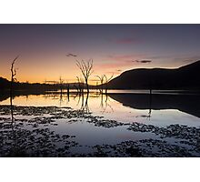 Somerset Rise Photographic Print