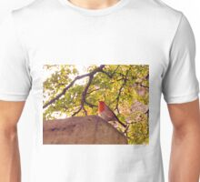 You Ought To Show Me The Door Today T-Shirt