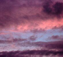 Purple sky by RedBallooon