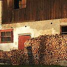 Old Farmhouse, Graz, Austria by KUJO-Photo