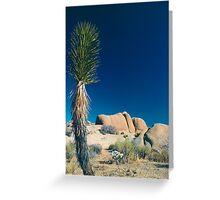 Stone Face, Joshua Tree National Park, California Greeting Card