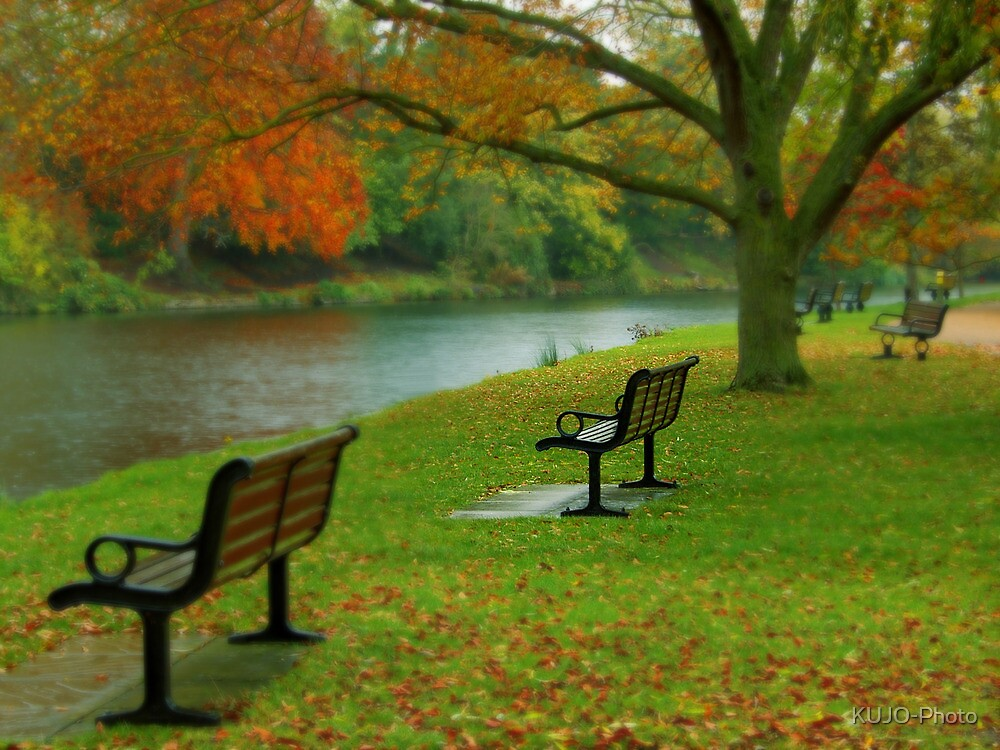 Park Benches, Stratford-upon-Avon by KUJO-Photo