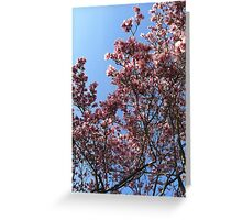 A magnolia in Red Hook Greeting Card