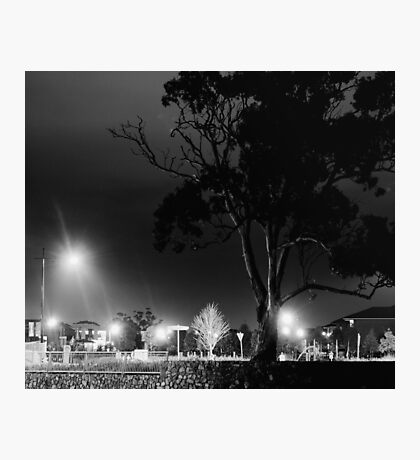 The last stand against the urban sprawl Photographic Print