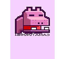 Hippopotamas Photographic Print