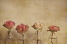 Cherished by Anne Staub
