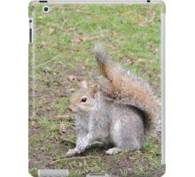 Perky iPad Case/Skin