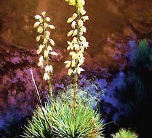 Canyon Yucca by DebMerritt