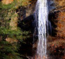Chivo Falls by DebMerritt