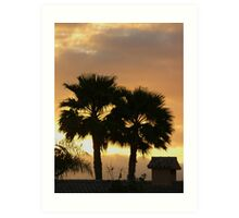 Two Palm Trees in the Sunset Art Print