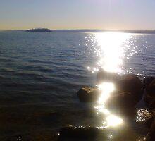 Liquid Love Found at Grinnells Beach Tiverton RI by listeningheart