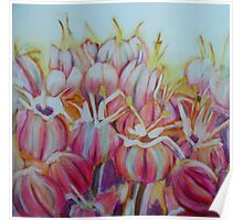 Allium flower, mixed media on canvas Poster