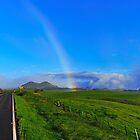 Road to Mauna Kea Hawaii by Richard  Leon