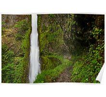 Tunnel Falls Detail - Mt. Hood N. F. Poster