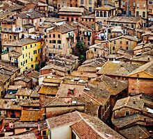 Siena Rooftops by Lynnette Peizer